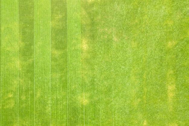 Nahaufnahme der luftaufnahme der oberfläche des grünen frisch geschnittenen grases auf dem fußballstadion im sommer.