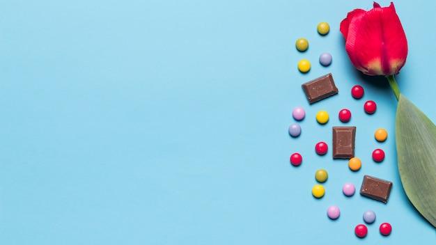 Nahaufnahme der roten tulpenblume mit edelsteinsüßigkeiten und schokoladenstücken mit raum für das schreiben des textes auf blauen hintergrund
