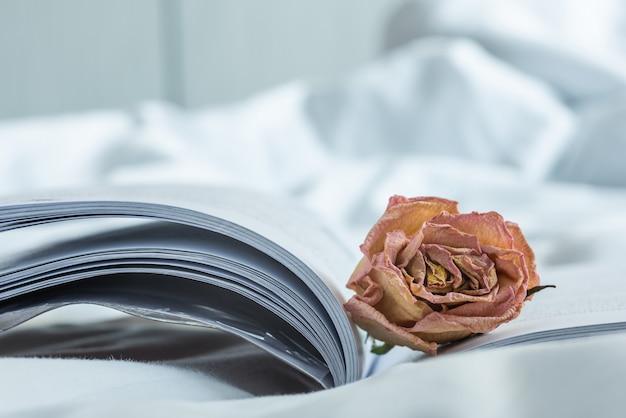 Nahaufnahme der verwelkten rosarose auf geöffnetem buch im reinraum