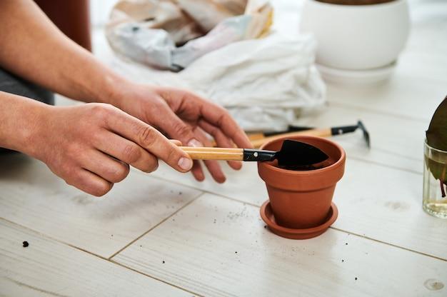 Nahaufnahme der weiblichen hände, die eine schaufel halten und pflanzenerde in tontopf setzen, bevor zimmerpflanzen gepflanzt werden
