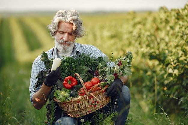 Nahaufnahme des alten bauern, der einen korb des gemüses hält. der mann steht im garten. senior in einer schwarzen schürze.