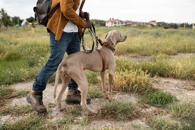 Nahaufnahme des besitzers, der mit hund geht