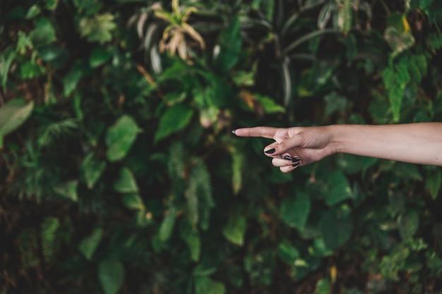 Nahaufnahme des fingers der frau, der vorwärts gegen wachsende anlage zeigt