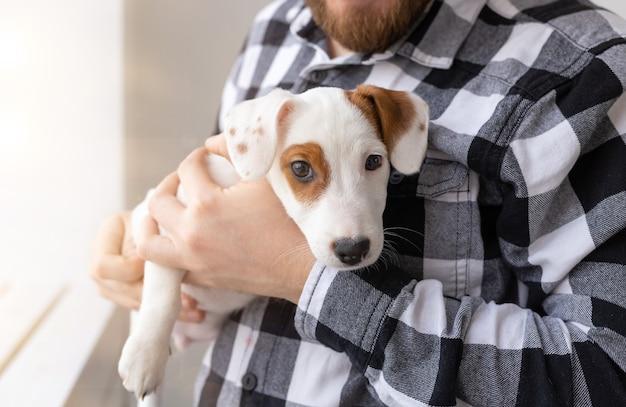 Nahaufnahme des jungen mannes, der jack russell terrier welpen auf weiß hält