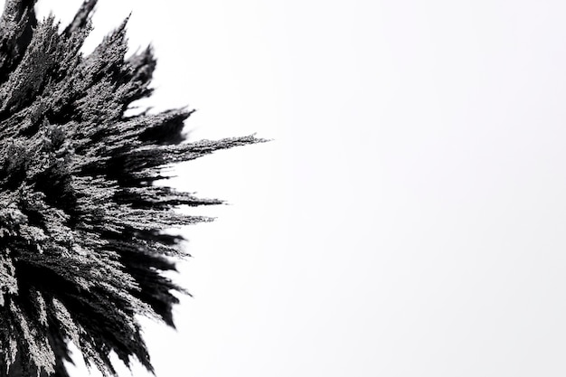 Nahaufnahme des magnetischen metallischen rasierens auf weißem hintergrund