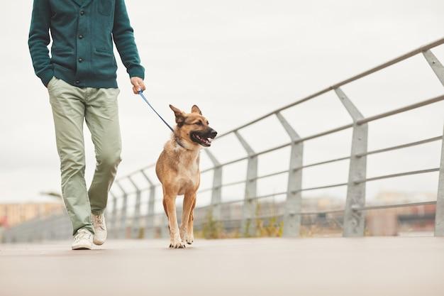 Nahaufnahme des mannes, der mit seinem deutschen schäferhund an einer leine entlang der brücke in der stadt geht