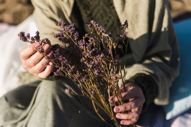 Nahaufnahme des natürlichen lavendels