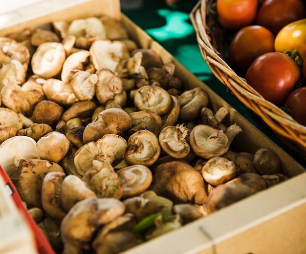 Nahaufnahme des organischen pilzes am markt