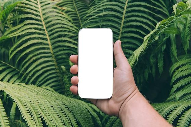 Nahaufnahme des smartphones in der hand gegen grün