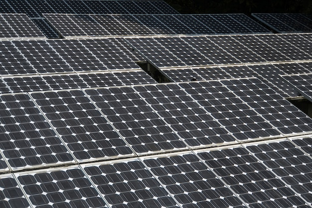 Nahaufnahme des sonnenkollektors. große sonnenkollektoren im regenwald. alternative sonnenenergie.