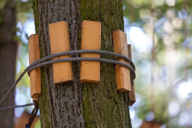 Nahaufnahme des starken festen seils der kabelweise geknotet gebunden am starken großen baumstamm