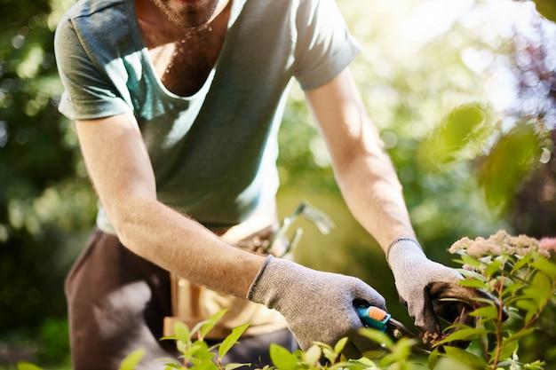 Nahaufnahme des starken mannes in den handschuhen, die blätter in seinem garten schneiden. landwirt, der sommermorgen arbeitet, der im garten nahe landhaus arbeitet.
