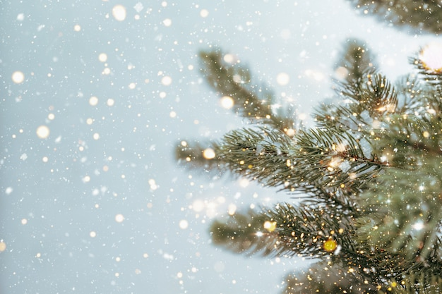 Nahaufnahme des weihnachtsbaumes mit funkelndem licht