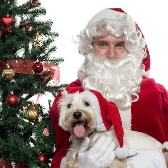 Nahaufnahme des weihnachtsmannes, der einen schoßhund hält, der auf weiß lokalisiert wird
