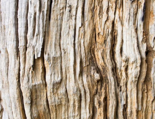 Nahaufnahme-detail der alten hölzernen gebrochenen strukturierten barke