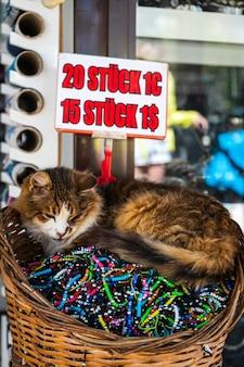 Nahaufnahme einer dreifarbigen katze, die friedlich in einem korb mit armbändern schläft, die in einem souvenirladen verkauft werden?