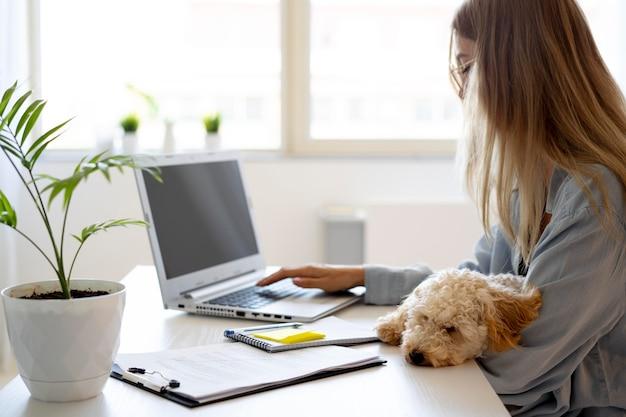 Nahaufnahme einer frau, die mit hund arbeitet
