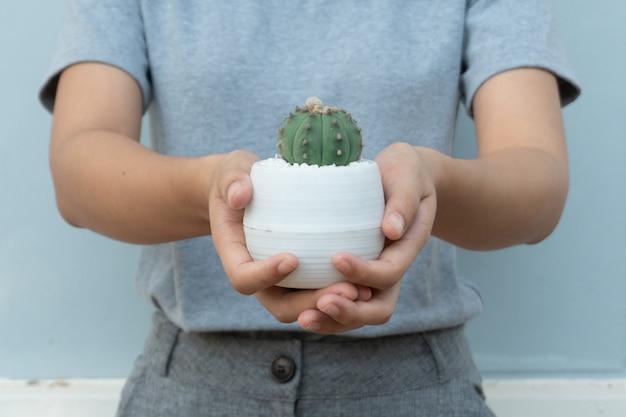 Nahaufnahme einer frau studieren und pflegen kaktus auf holztisch im kaktusanbauhaus, kaktuskindergarten