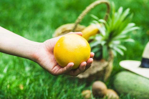 Nahaufnahme einer menschlichen hand, die orange frucht hält