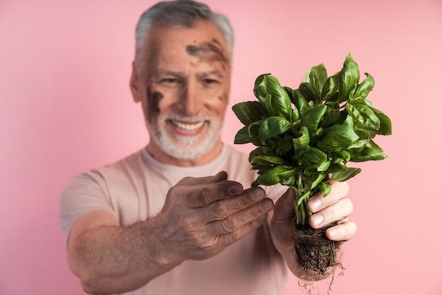 Nahaufnahme eines älteren mannes, der ein basilikum in seinen händen hält, sein gesicht schmutzig