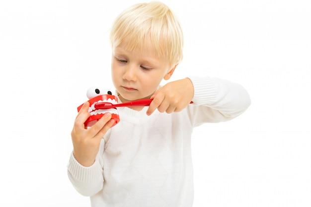 Nahaufnahme eines blonden männlichen kindes mit einem spielzeug in form eines zahnkiefers und einer weißen zahnbürste auf einem weißen hintergrund