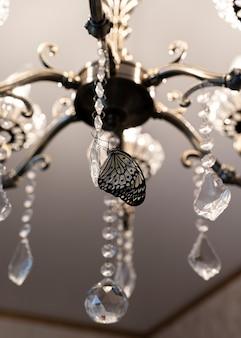 Nahaufnahme eines erstaunlichen tropischen schmetterlings auf kristallen von kronleuchtern auf dem kopf