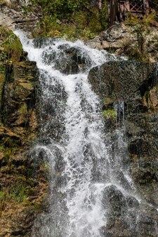 Nahaufnahme eines mächtigen wasserfalls in hoher qualität. seitenansicht eines sonnendurchfluteten wasserfalls in freier wildbahn. ein großer wasserstrahl ergießt sich vom berg herab.