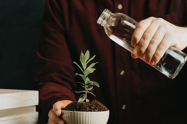 Nahaufnahme eines mannes, der gerade dabei ist, eine pflanze in einem topf mit kopierraum zu gießen
