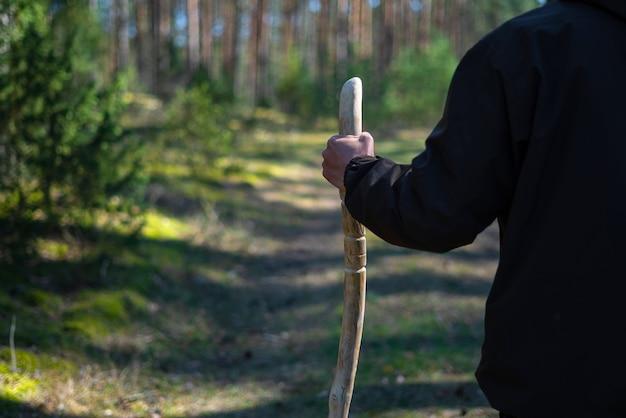 Nahaufnahme eines mannes mit einem gehstock im wald. handgemachter hölzerner wanderstock in der hand des wanderers an einem sonnigen tag