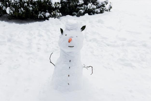 Nahaufnahme eines schneemanns auf schneebedecktem land in der wintersaison