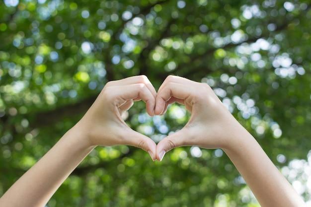 Nahaufnahme fokus frau hände zeigen liebe geste