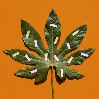 Nahaufnahme gemalte draufsicht des kastanienblattes