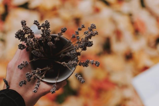 Nahaufnahme hoher winkelschuss einer hand, die eine vase voll trockener pflanzen über dem blattbedeckten boden hält