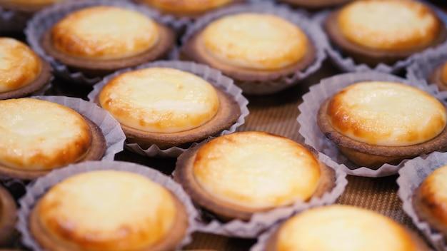 Nahaufnahme-käse-tarte mit besonderem frischen und einzigartigen geschmack, die jeden tag aus der ofenmaschine gebacken wird