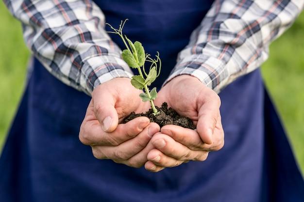 Nahaufnahme mann mit pflanze