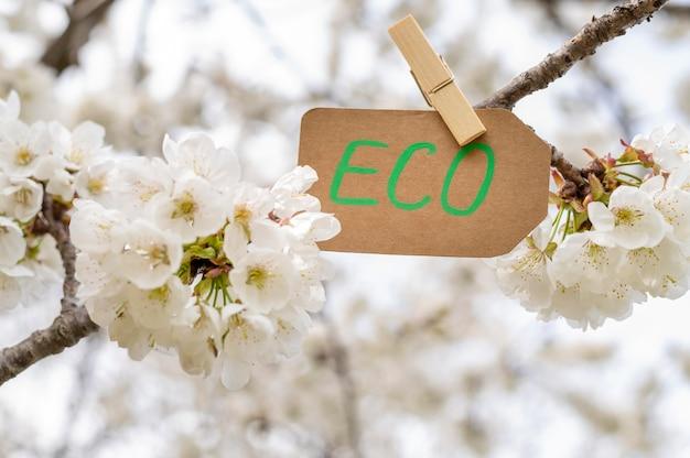 Nahaufnahme-öko-zeichen in baumblumen