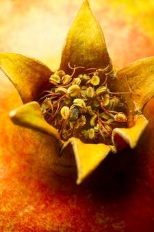 Nahaufnahme pomergranate frucht