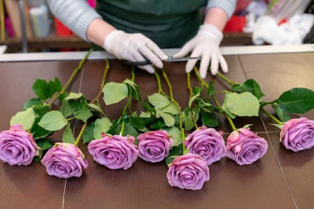 Nahaufnahme sortiment von lila rosen