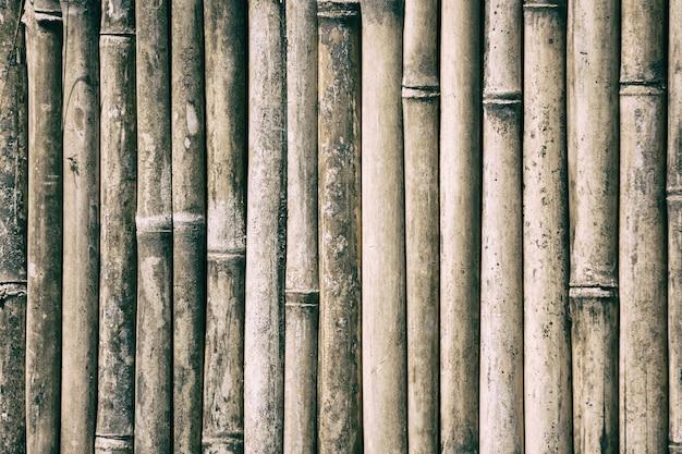 Nahaufnahme von bambusholz