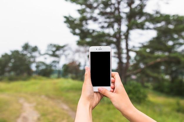 Nahaufnahme von den händen, die auf smartphone im wald klicken