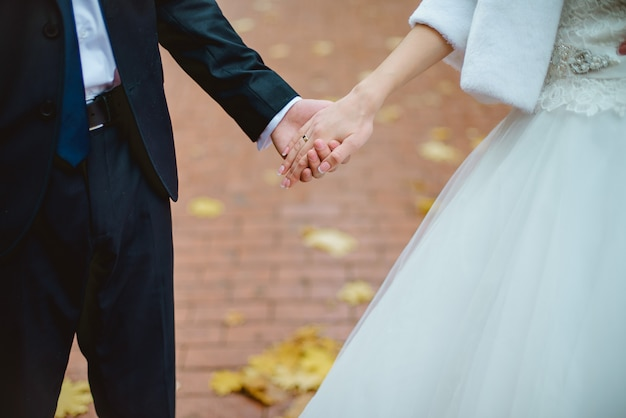 Nahaufnahme von den jungvermählten, die die hände halten und ihre eheringe zeigen