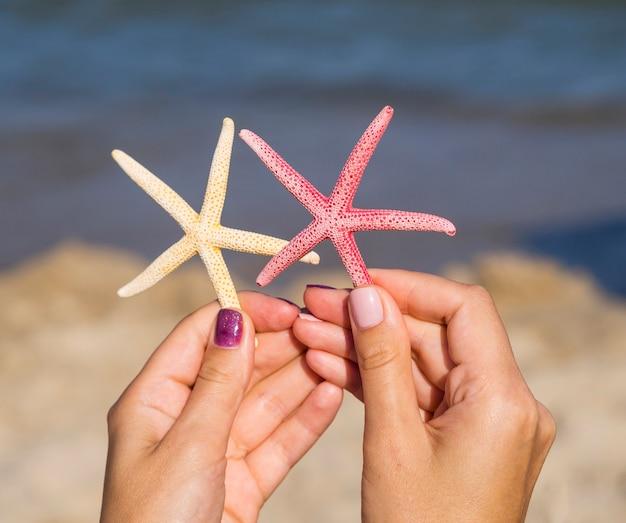 Nahaufnahme von den starfishes, die nahe bei dem meer gehalten werden