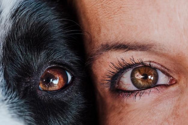 Nahaufnahme von frau und hund augen zusammen. liebe zum tier-konzept