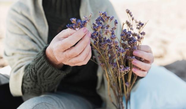 Nahaufnahme von frischem lavendel