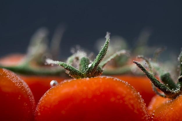 Nahaufnahme von frischen nassen tomaten isoliert