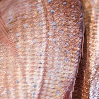 Nahaufnahme von gefrorenen fischen im speicher