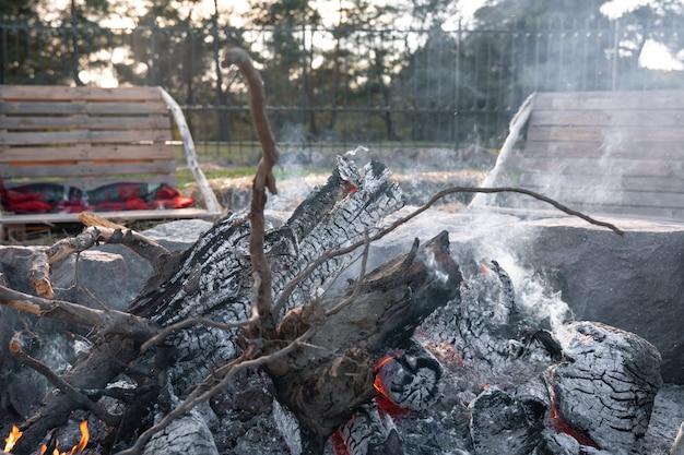 Nahaufnahme von großen baumstämmen in einem sterbenden feuer