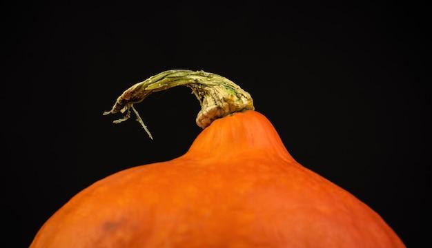 Nahaufnahme von hokkaido pumpkin oder red kuri auf schwarzem hintergrundfoto
