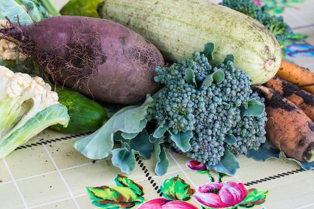 Nahaufnahme von kürzlich geernteten gemüserüben, rote-bete-wurzeln, karotten, rundes mark, tomaten, gurke, zucchini, gartenbohnen, brokkoli, rote rübe. aymumn-ernte. stillleben mit gemüse