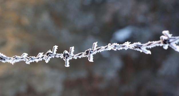 Nahaufnahme von mattiertem stacheldraht mit eiskristallen